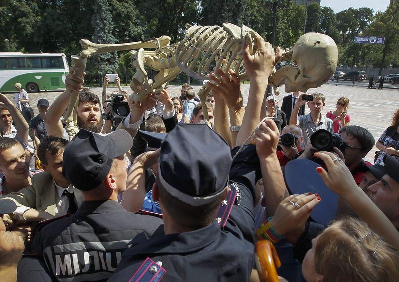 """Скелет нардепа"""" проти законопроекту """"Про мирні зібрання"""" — Високий Замок 58fe7714dc224"""